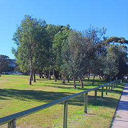 debug_Broadarrow Reserve