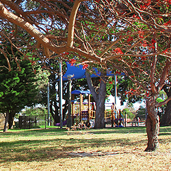 debug_Bangor Park